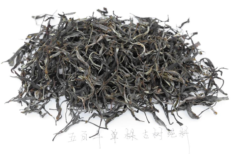 程健冰魄单株古树纯料普洱生茶